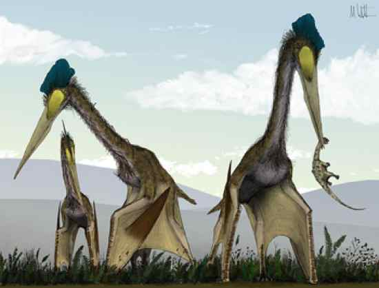 Quetzalcoatlus-Witton