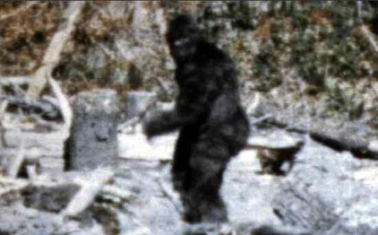 Bigfootaa