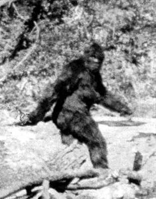 Sasquatch-Classicphoto
