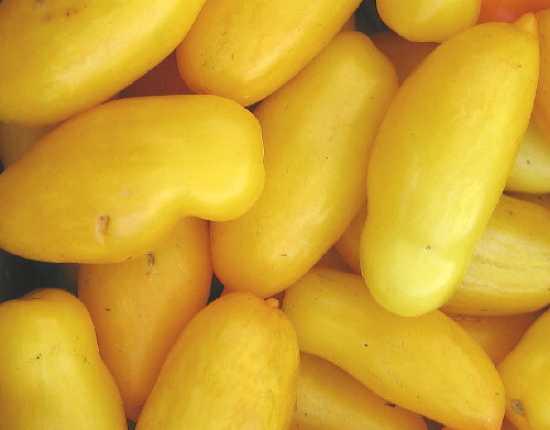 Bananalegstomato