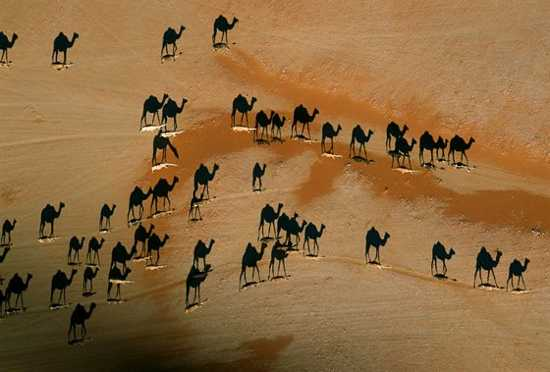 George Steinmetz Photography 1