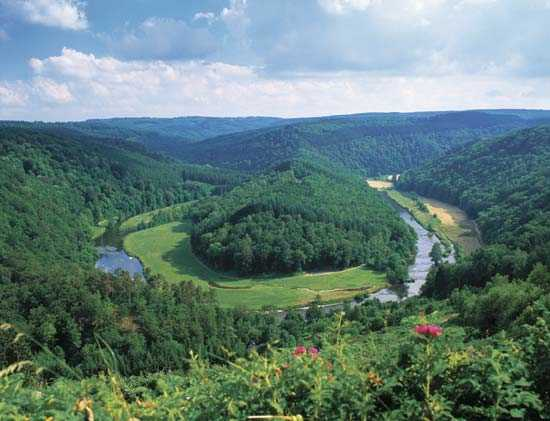 Belgian-Ardennes1