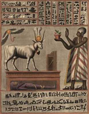 Animal-Domestication-Egypti