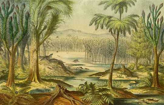 Carboniferous Fore 1773975B