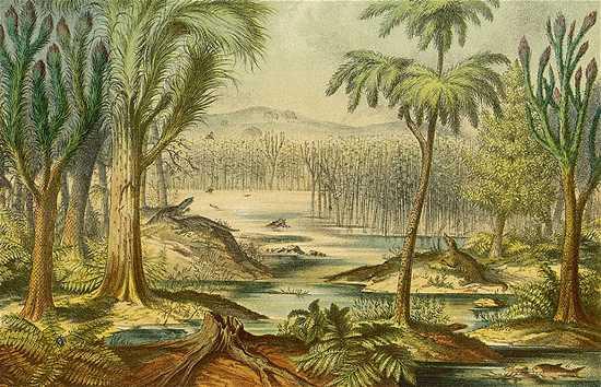 Carboniferous Fore 1773975B