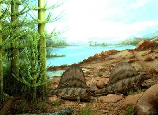 Triassic Animals List Top 10 Mass Extinction...