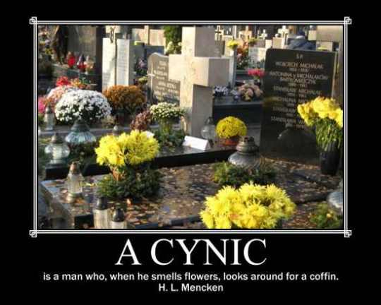 Cynic