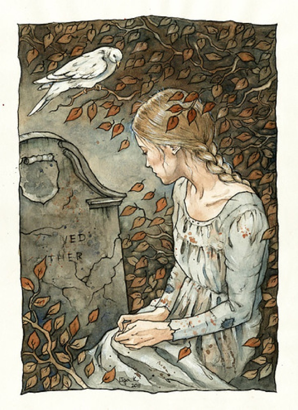 Fairy,Like,Illustration,Art,Bird,Cinderella,Death-Dc2880602F455Dd1Bf8758C10Ee53C4A H