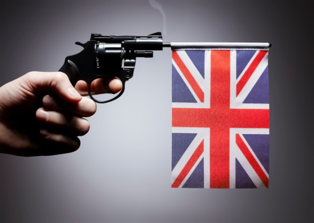 Gun control? ban or allow free ownership?