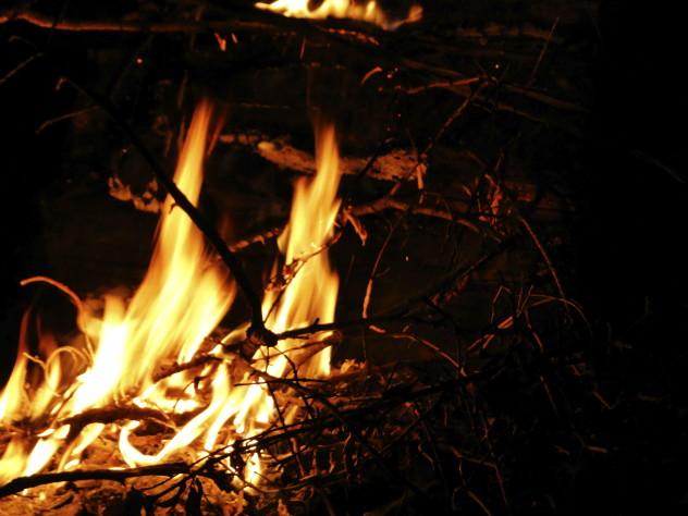 5 cremation