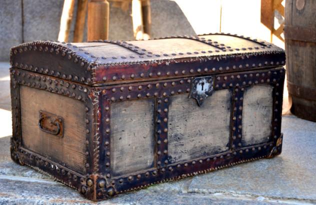 1 trunk