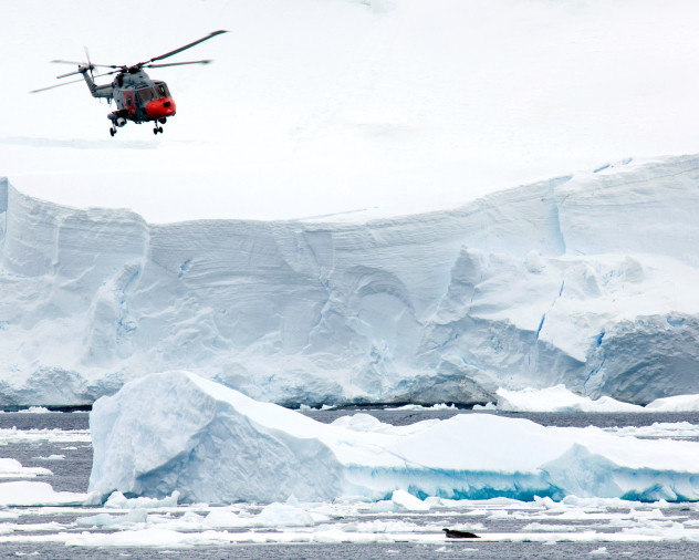HMS Endurance's Lynx helicopter flies past a seal
