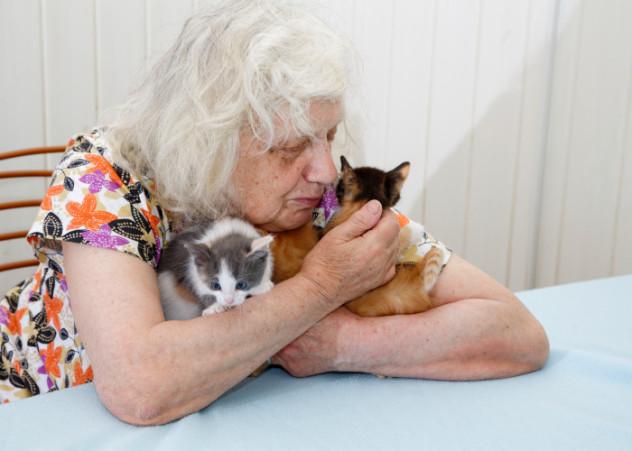 grandma with kittens