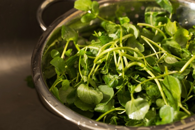 Watercress in colander after rinsing.