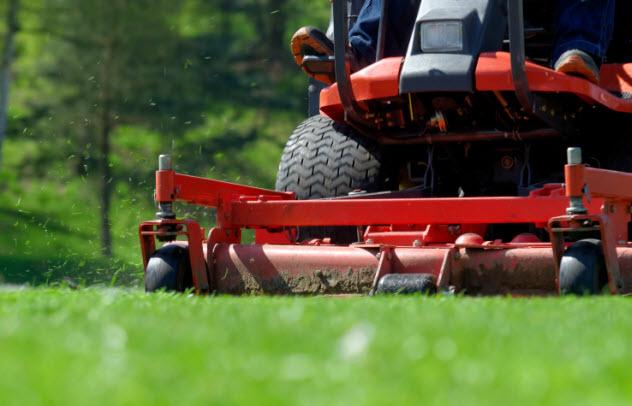 6-cut-grass-178033413