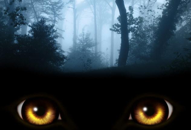 3-werewolf-eyes-520412581
