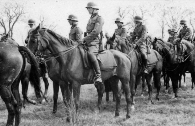 3-german-horses