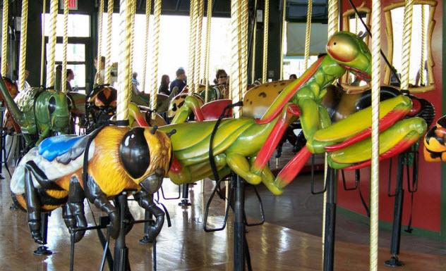 7-bug-carousel