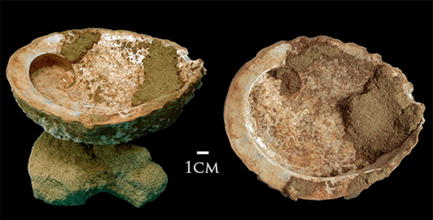 Blombos Cave Artifacts