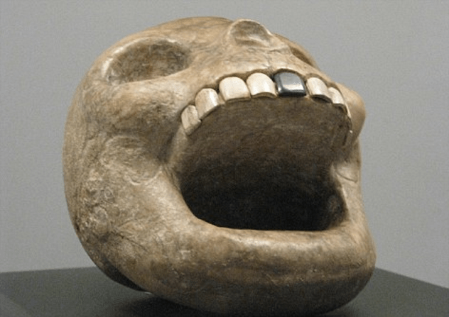 Monkey-Shaped Skull