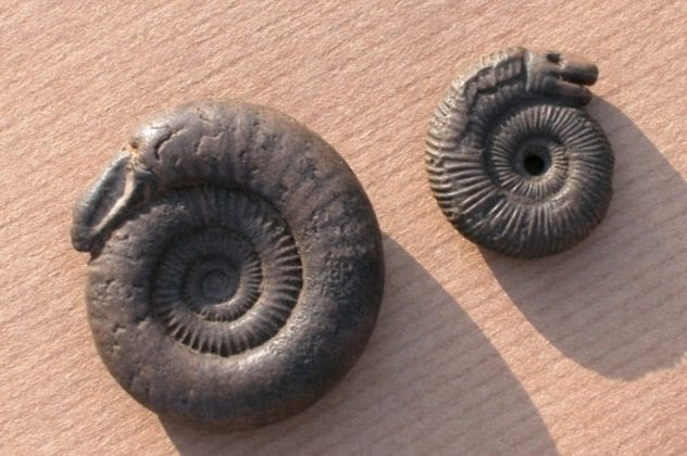 snakestones