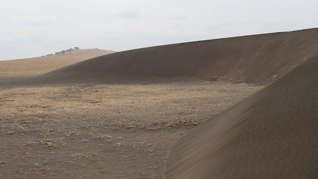 tanzania-moving-dune