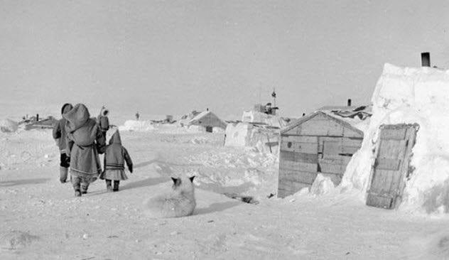 6-arctic-relocation