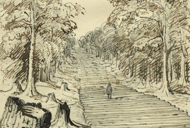 corduroy-road
