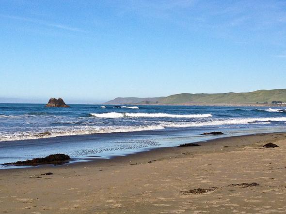 beach in Cayucos