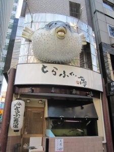 fugu, the poisonous blow fish, was is season