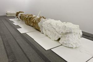 Matthew Barney - Ambergris and Winch in Fleshing Station, 2005/2010