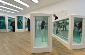 Visitors view Mother and Child Divided, a bisected cow and calf by British artist Damien Hirst at the Tate Modern gallery in London