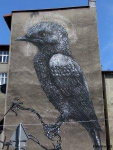 roa mural katowice street art festival1