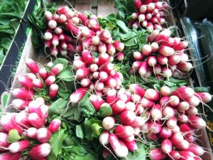 borough market 16