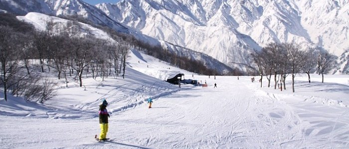TOP 5 SKIING LOCATIONS IN JAPAN YOU MUST VISIT