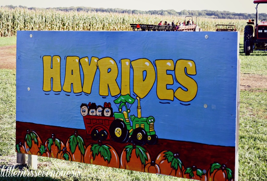 Hayrides at Carolyn's