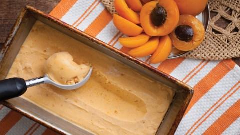 apricot sherbet