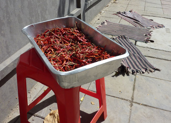 Sun Drying Chilies, Bangkok Street Food Street, Southeast Asia