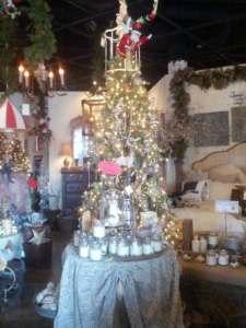 Santa tree Scottsdale AZ