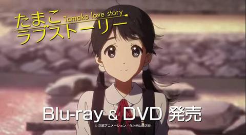 「Blu-ray&DVD発売!」←そろそろBDだけでいいんじゃない?