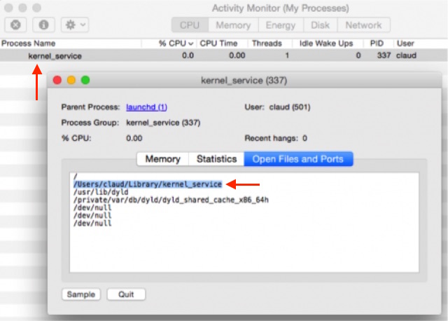 kernel_service-activity-monitor