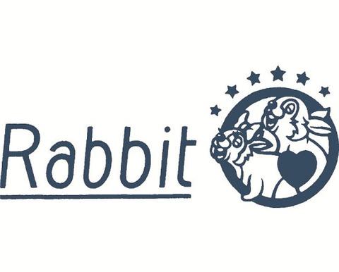 【画像】Mステにロックバンド「Rabbit」として出演した大塚愛wwwwwwwww