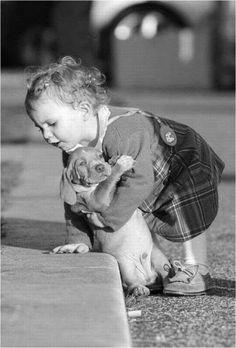 犬と赤ちゃん19