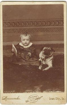 犬と赤ちゃん46