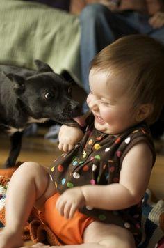 犬と赤ちゃん35