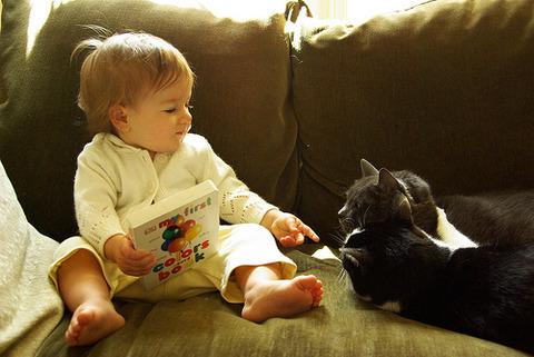 猫と赤ちゃん23