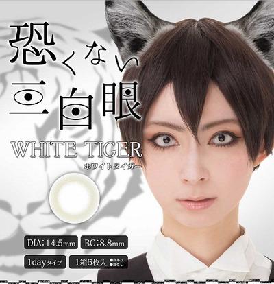 white_tiger-1