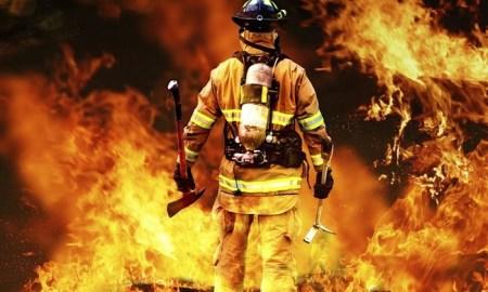 犬 人工呼吸 消防士に関連した画像-01