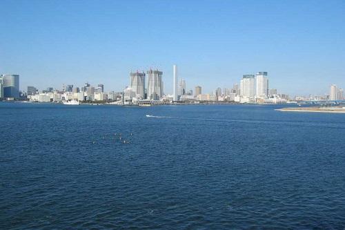 大地震の前触れか・・・M8.5の地震の前に東京湾にシャチの群れ!!関係者も衝撃「聞いたことがない」