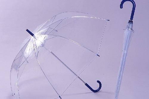 【悲報】同僚に傘で目を突かれた男性が死亡・・・傷は脳まで達していた模様